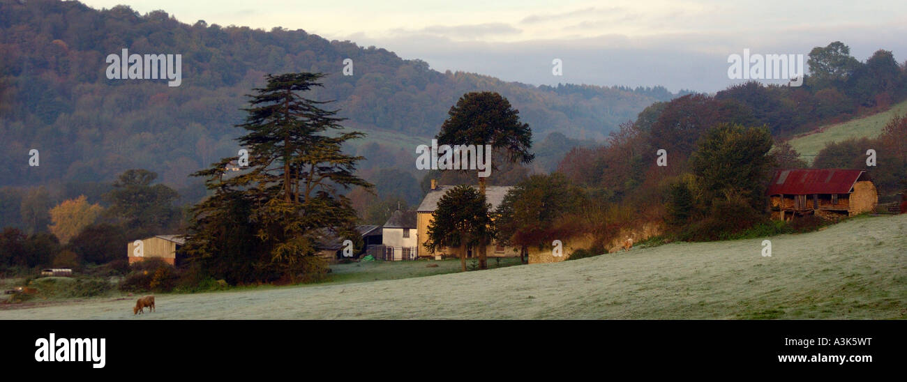 Panoramic misty early morning Dartmoor farming scene with soft focus and muted colours - Stock Image