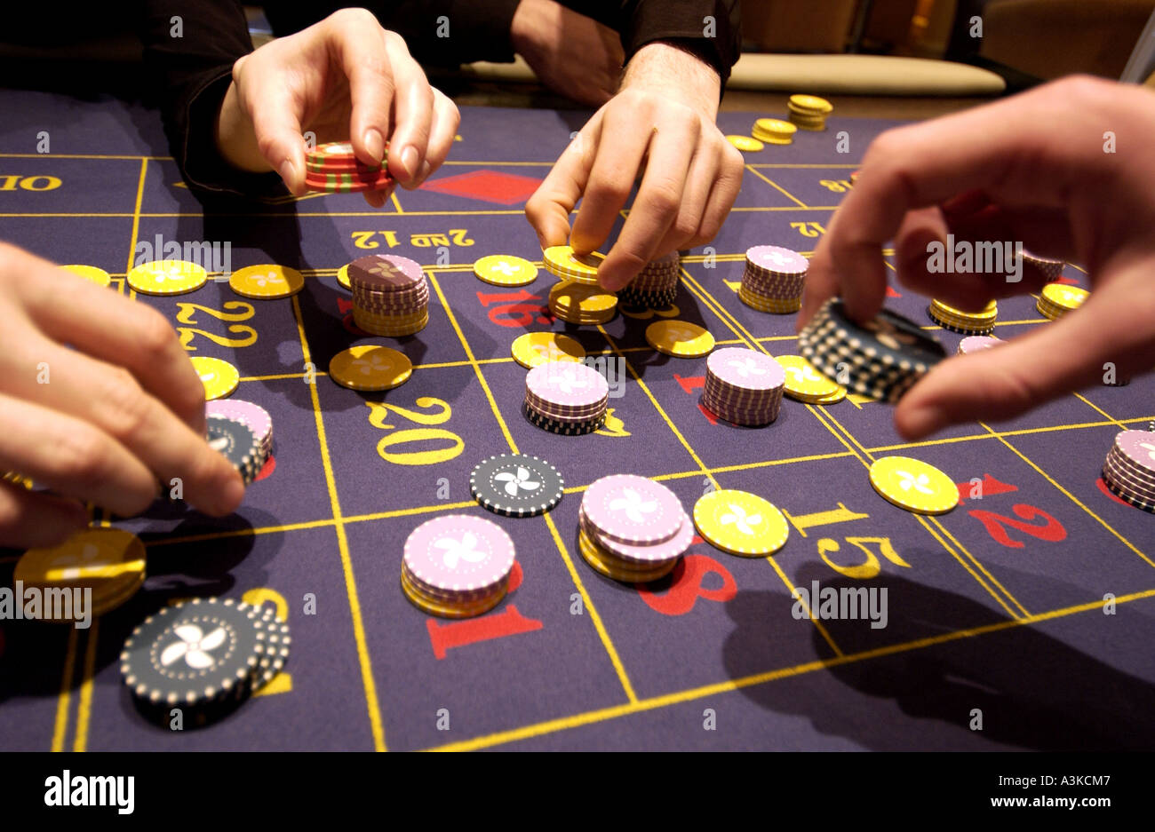 Punters place bets with chips on roulette table - Stock Image