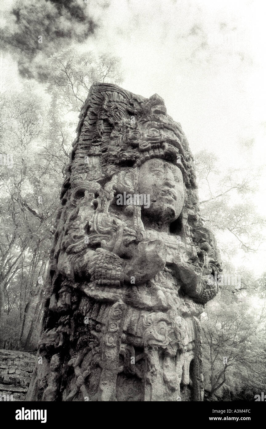 COPAN HONDURAS Stone carved stela megalith depicting ancient Maya King Smoke 18 Rabbit Copan Honduras By Jamie Marshall Stock Photo