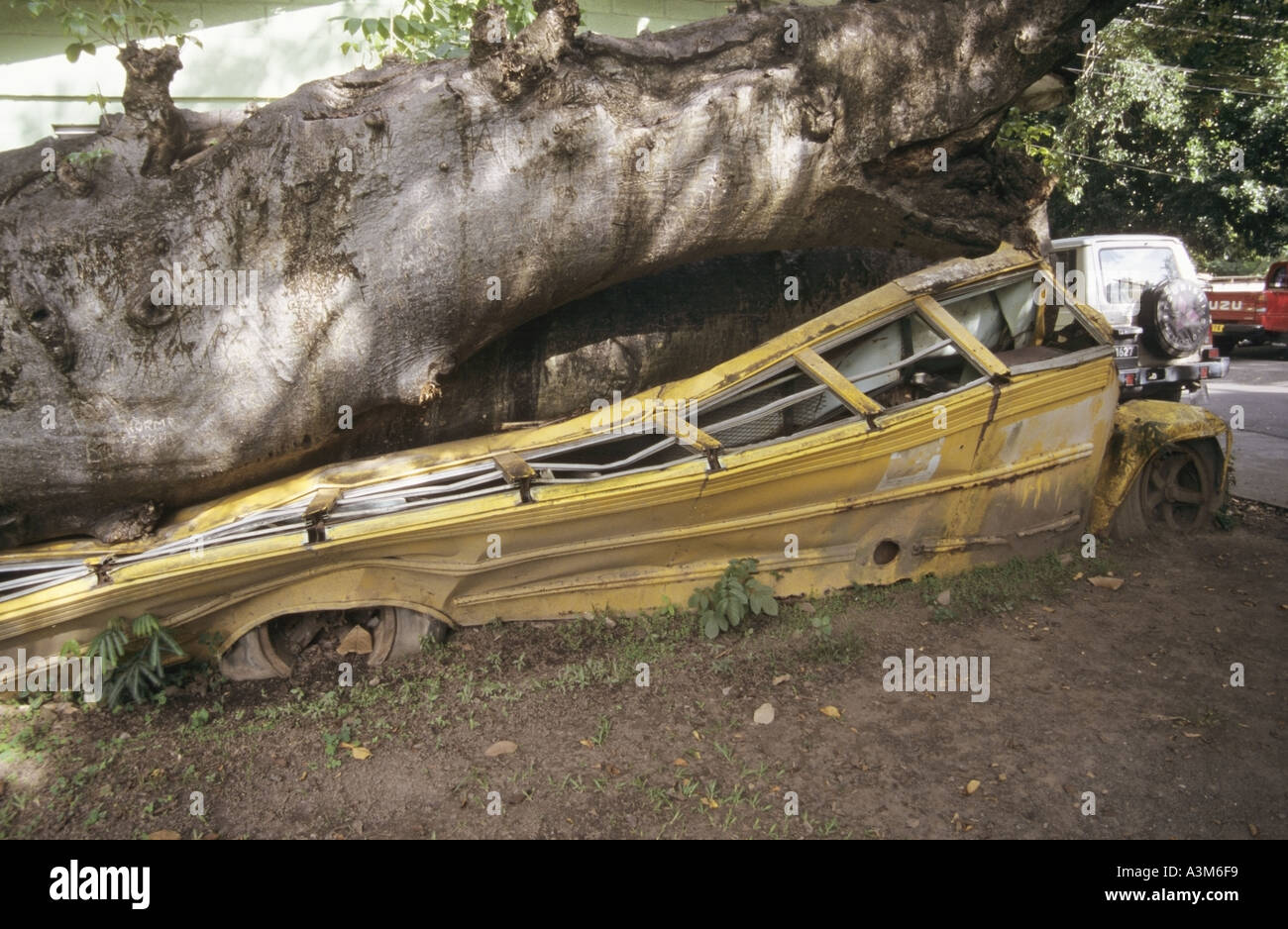 Roseau The Botanical Gardens hurricane damage to yellow school bus ...
