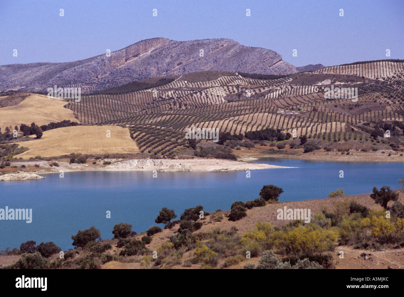 The Andalucian Lakes near Antequera. Stock Photo