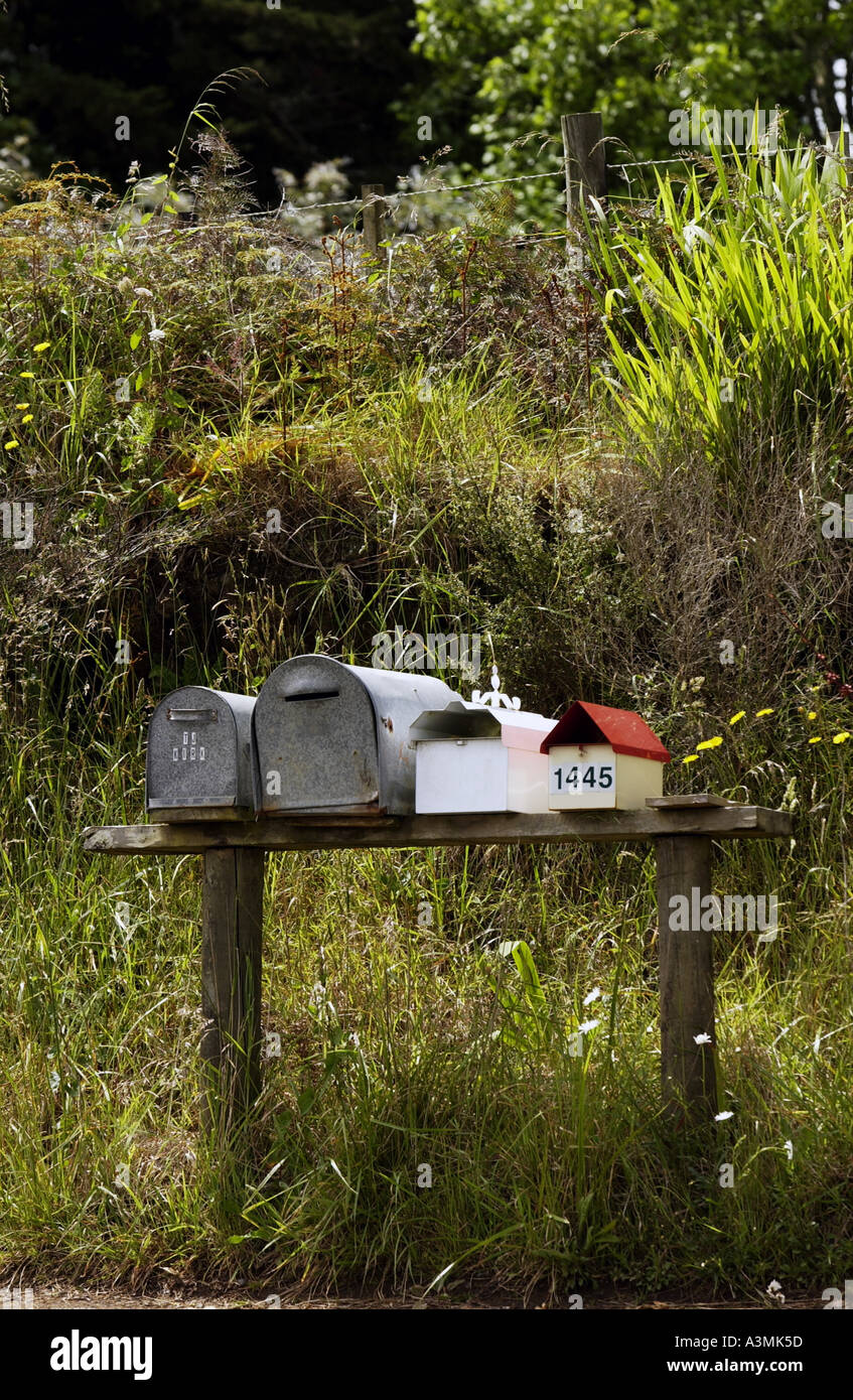 Row of mailboxes North Island New Zealand Stock Photo