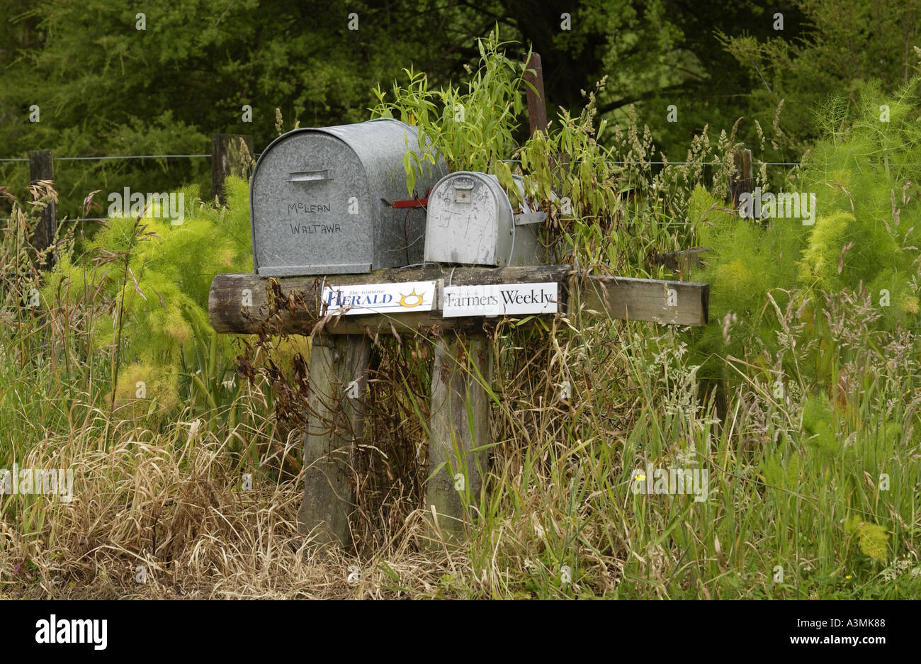 Pair of mailboxes North Island New Zealand - Stock Image