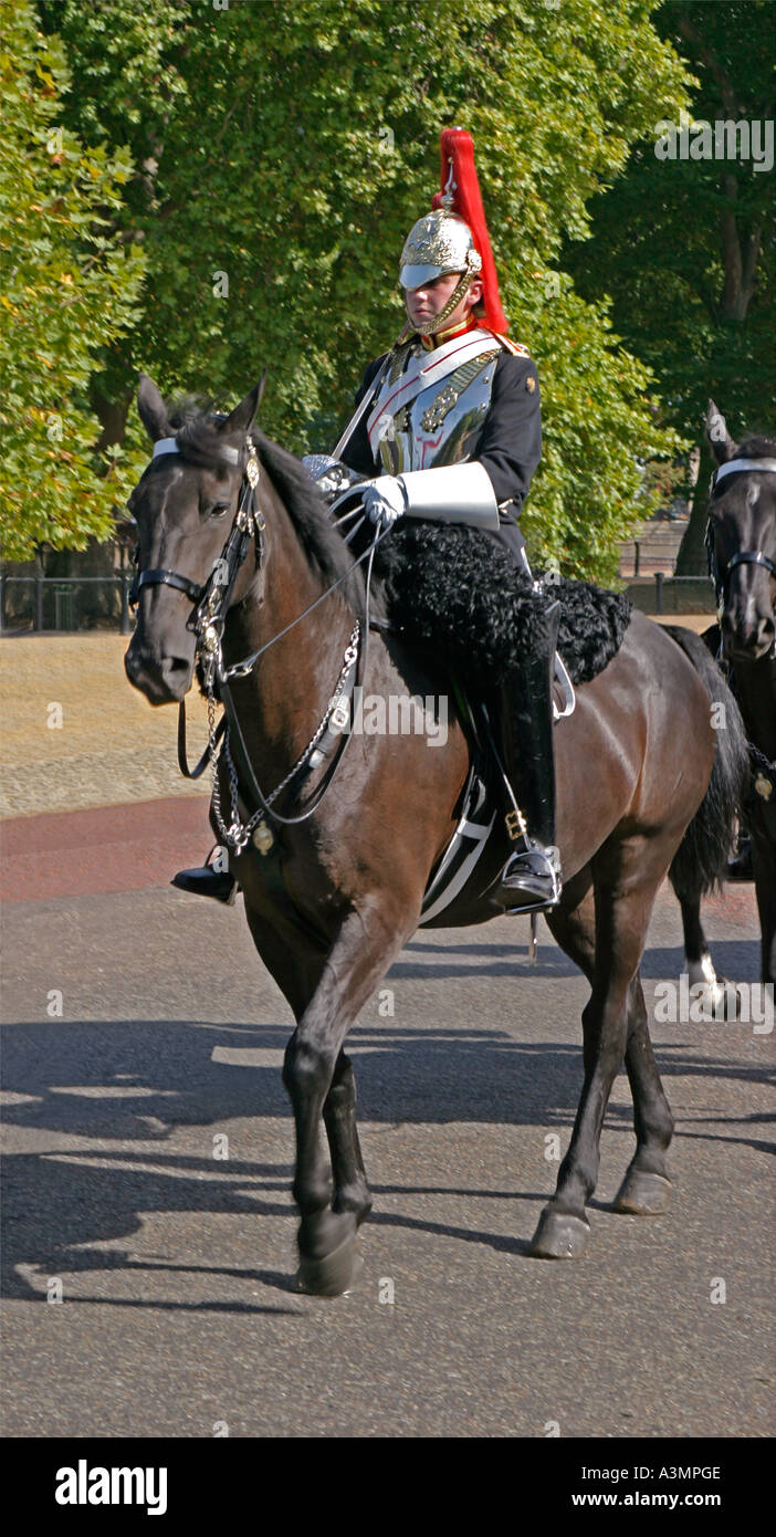 A mounted soldier from the Blues and Royals regiment which forms part of the British Household Cavalry Stock Photo