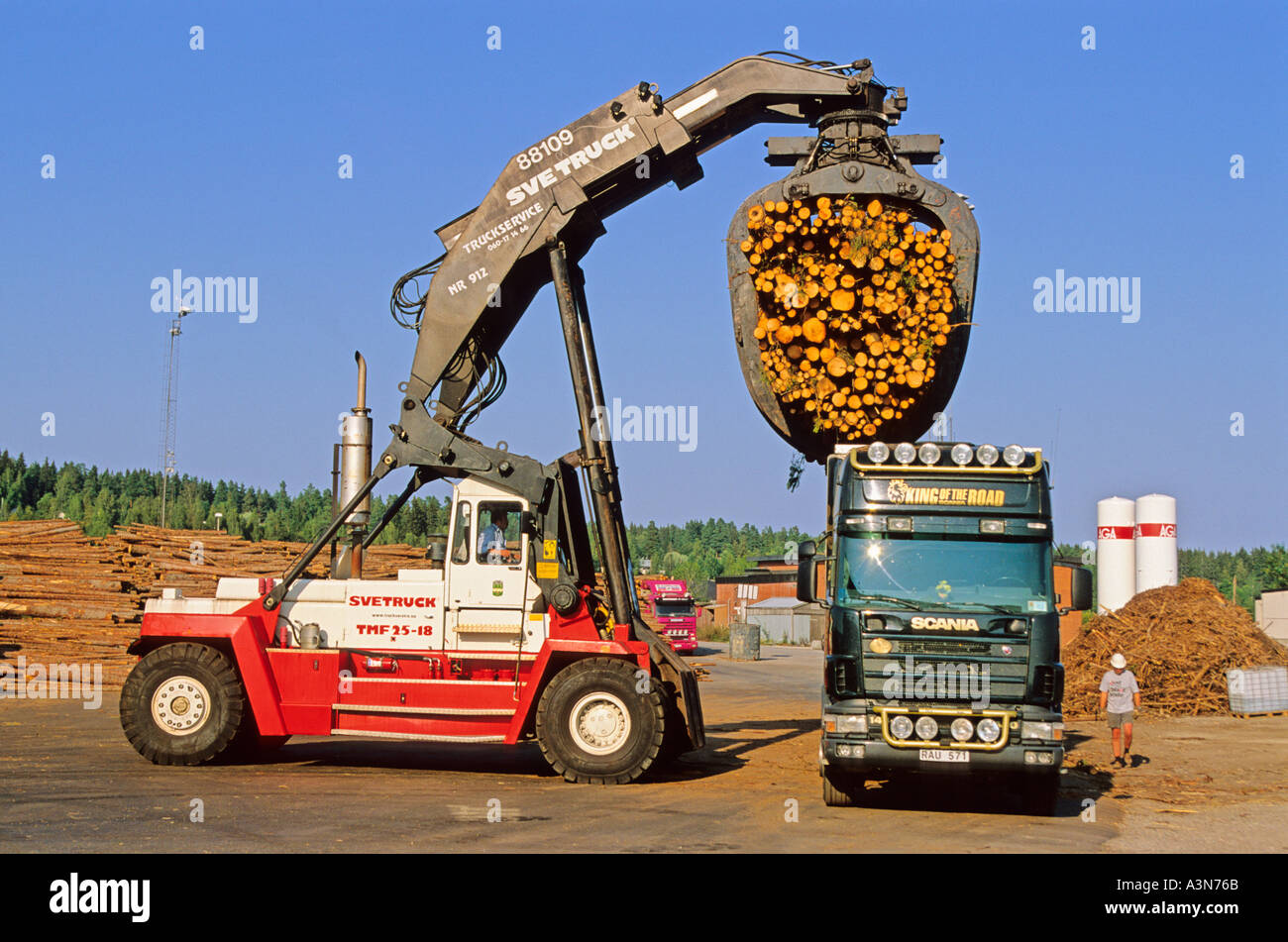 Loading harvested plantation Norway spruce timber on to truck at Stock Photo: 2004842 ...
