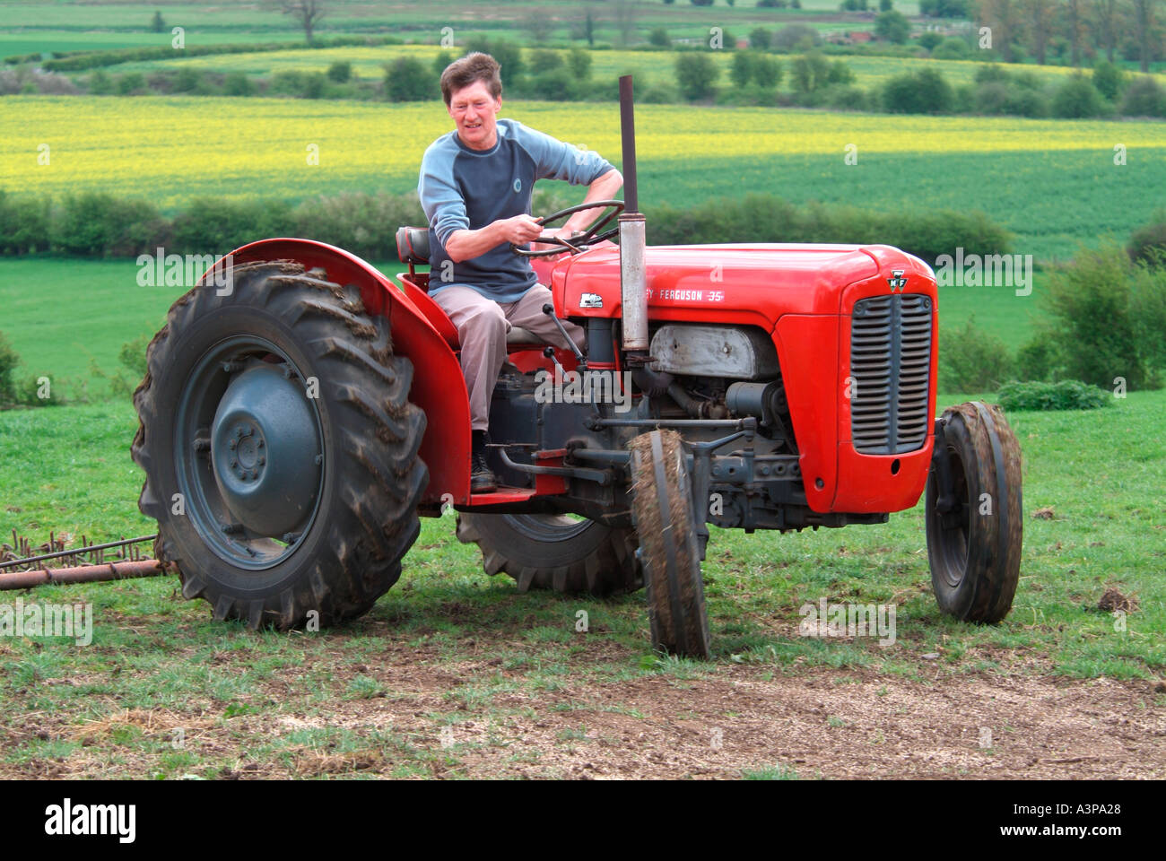 1959 red massey ferguson fe35 tractor used today for. Black Bedroom Furniture Sets. Home Design Ideas