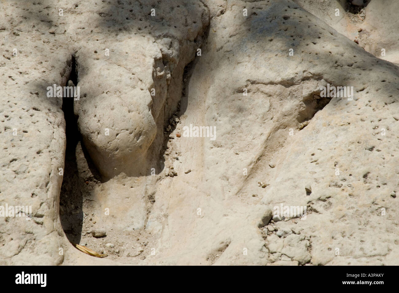 Big Footprint - Stock Image