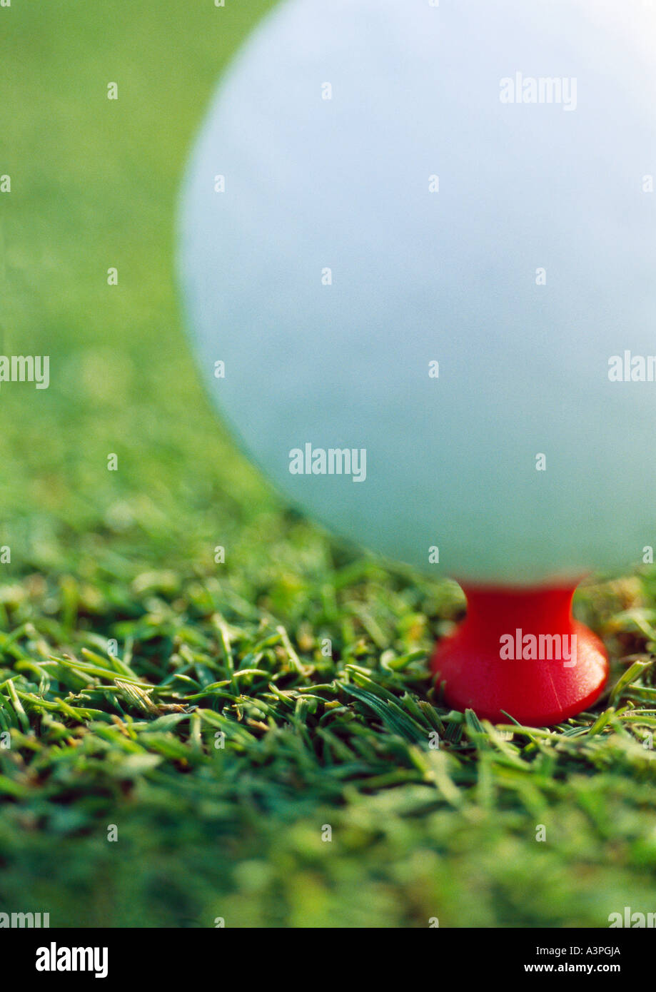 Teed golf ball, extreme close-up - Stock Image