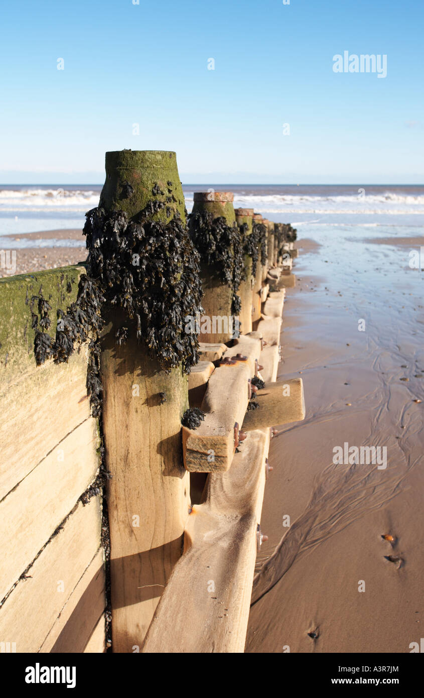 Sea defences breakwater, beach, UK - Stock Image