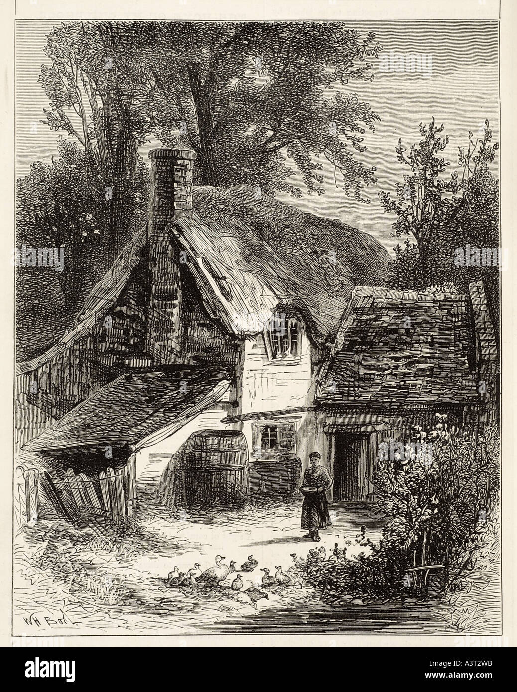 cottage Rural farm country countryside thatch straw house home remote quiet path wood tree - Stock Image