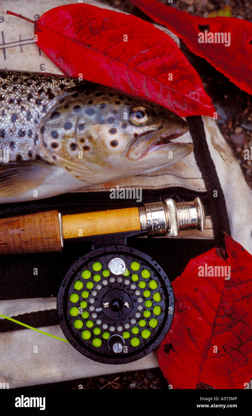 Fishing Rod And Creel Stock Photos & Fishing Rod And Creel Stock ...