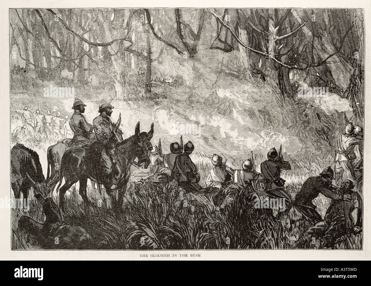 skirmish bush horse cavalry war soldier conflict Africa jungle history military rifle sword fight kill conflict danger - Stock Image