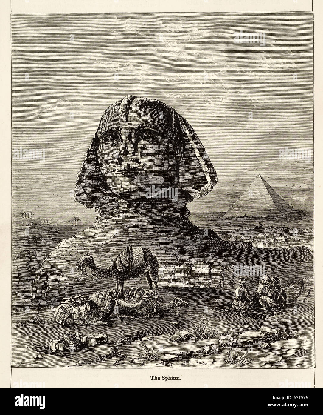 Sphinx Egypt Drawing Stock Photos & Sphinx Egypt Drawing