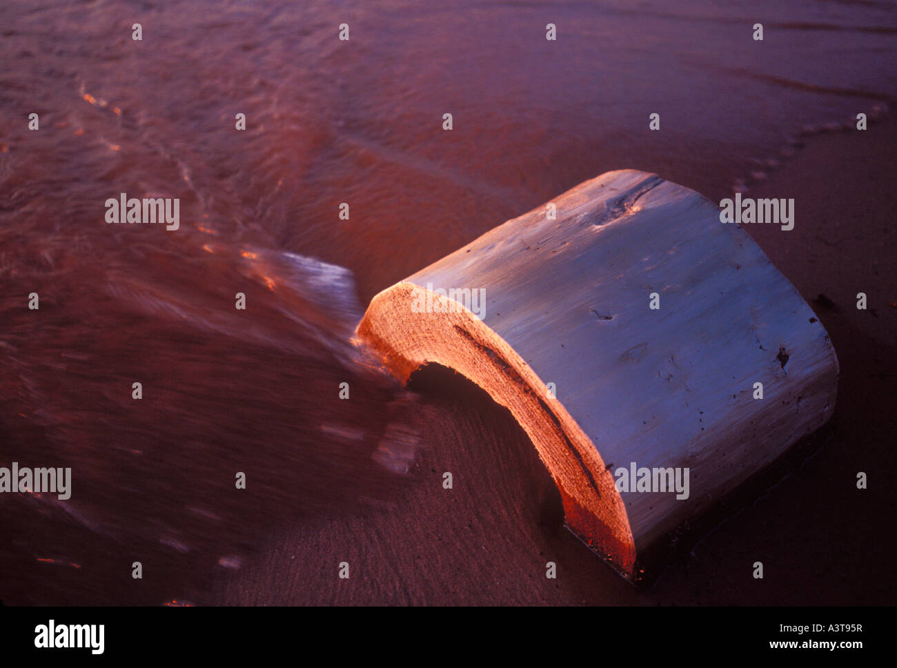Lsp Stock Photos & Lsp Stock Images - Alamy