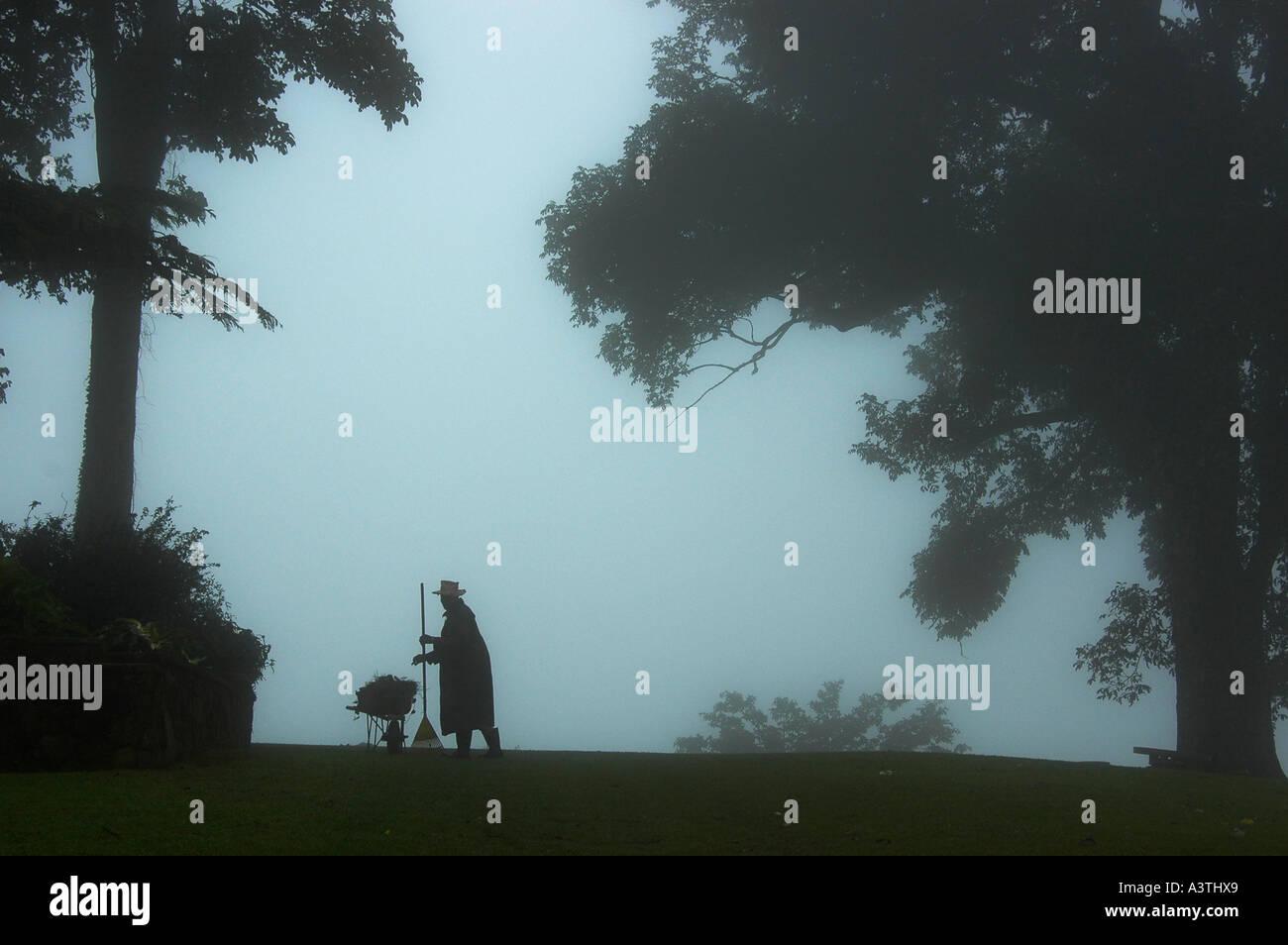 gardener in the mist, Zimbabwe - Stock Image