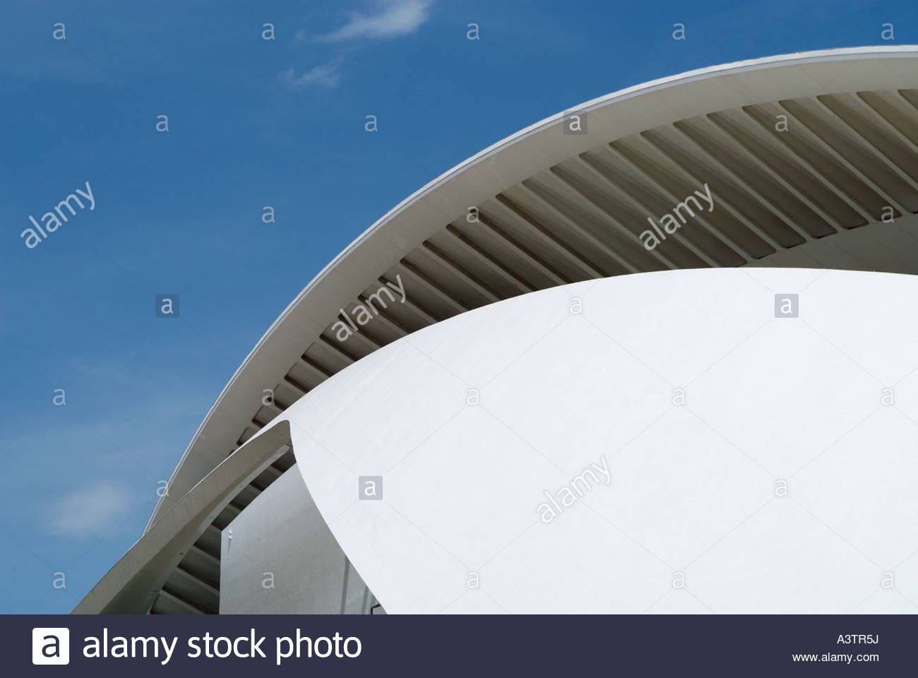 El Palau de les Arts Reina Sofía (Opera house) in the City of Arts and Sciences Valencia, Spain, by architect - Stock Image