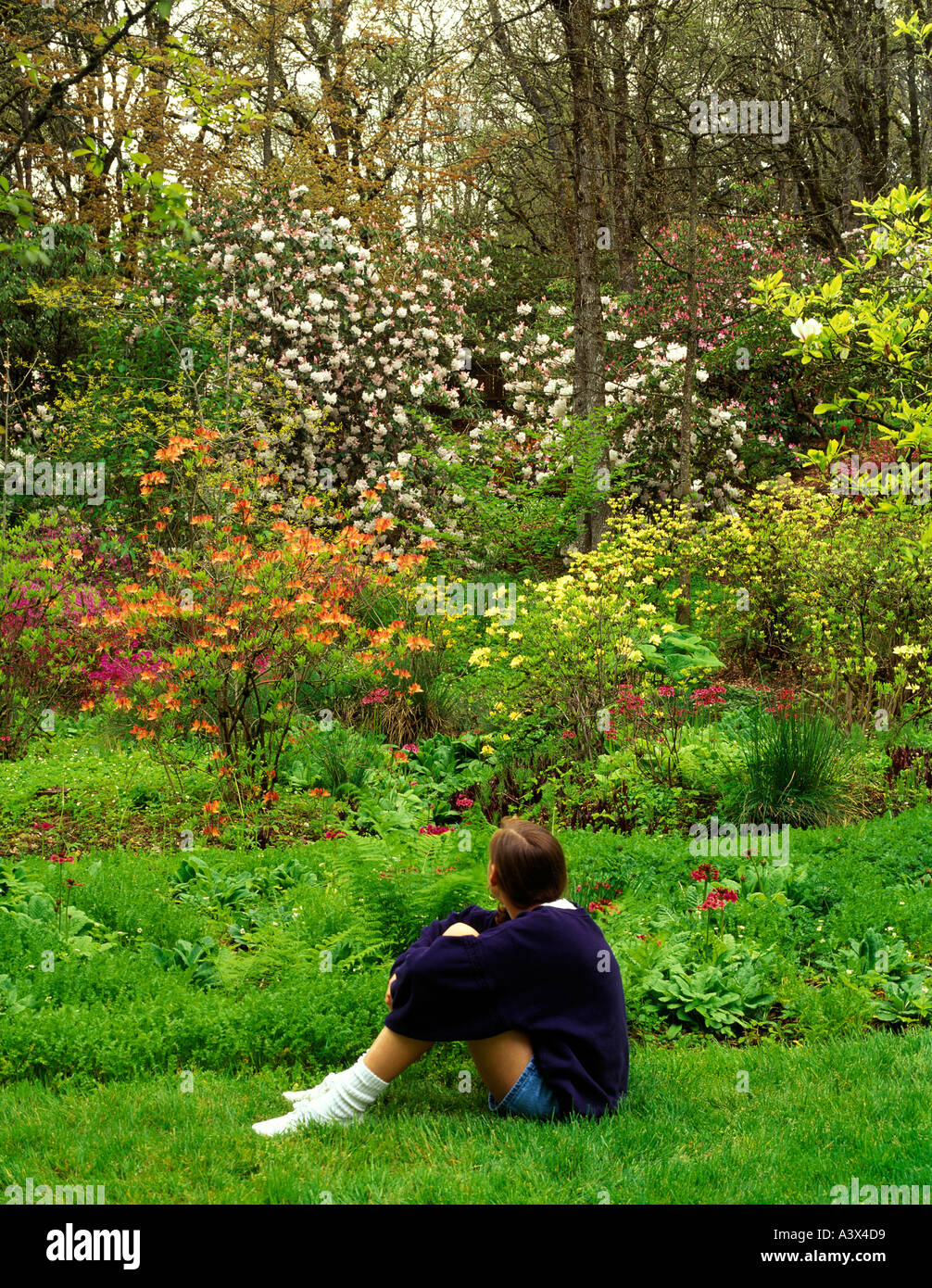 Young girl sitting at Hendricks Park Eugene Oregon - Stock Image