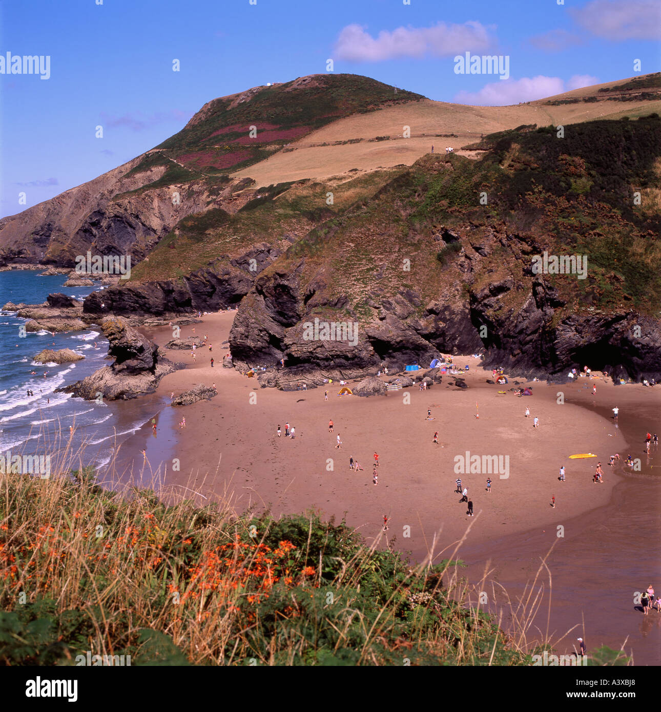 Bathers on the sands at Llangranog Cardigan Wales UK - Stock Image