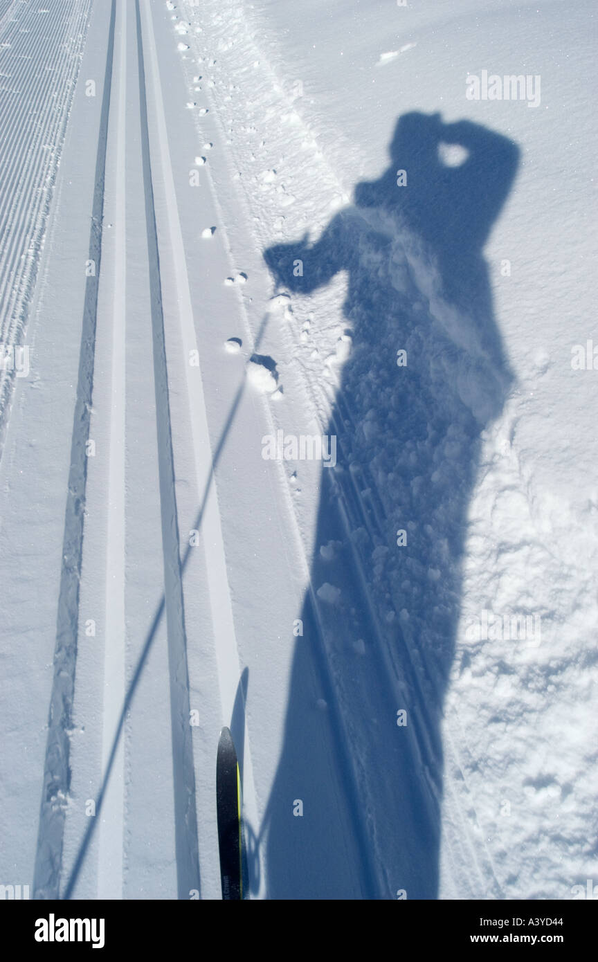 Shaddow of cross country skier in the snow int the cross country ski run Stock Photo