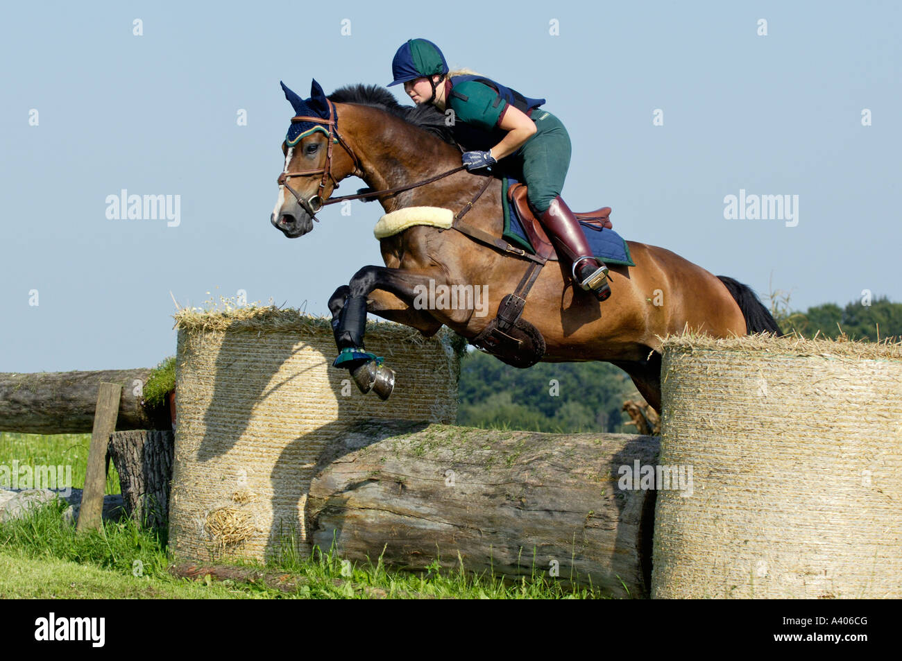 Young lady rider on back of a Bavarian horse jumping - Stock Image