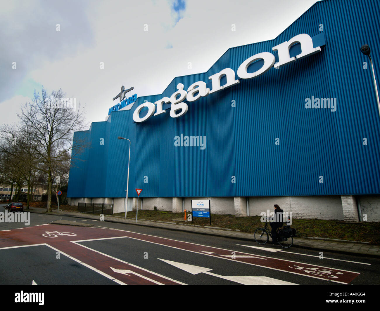 Organon oss the netherlands are steroids legal in professional bodybuilding