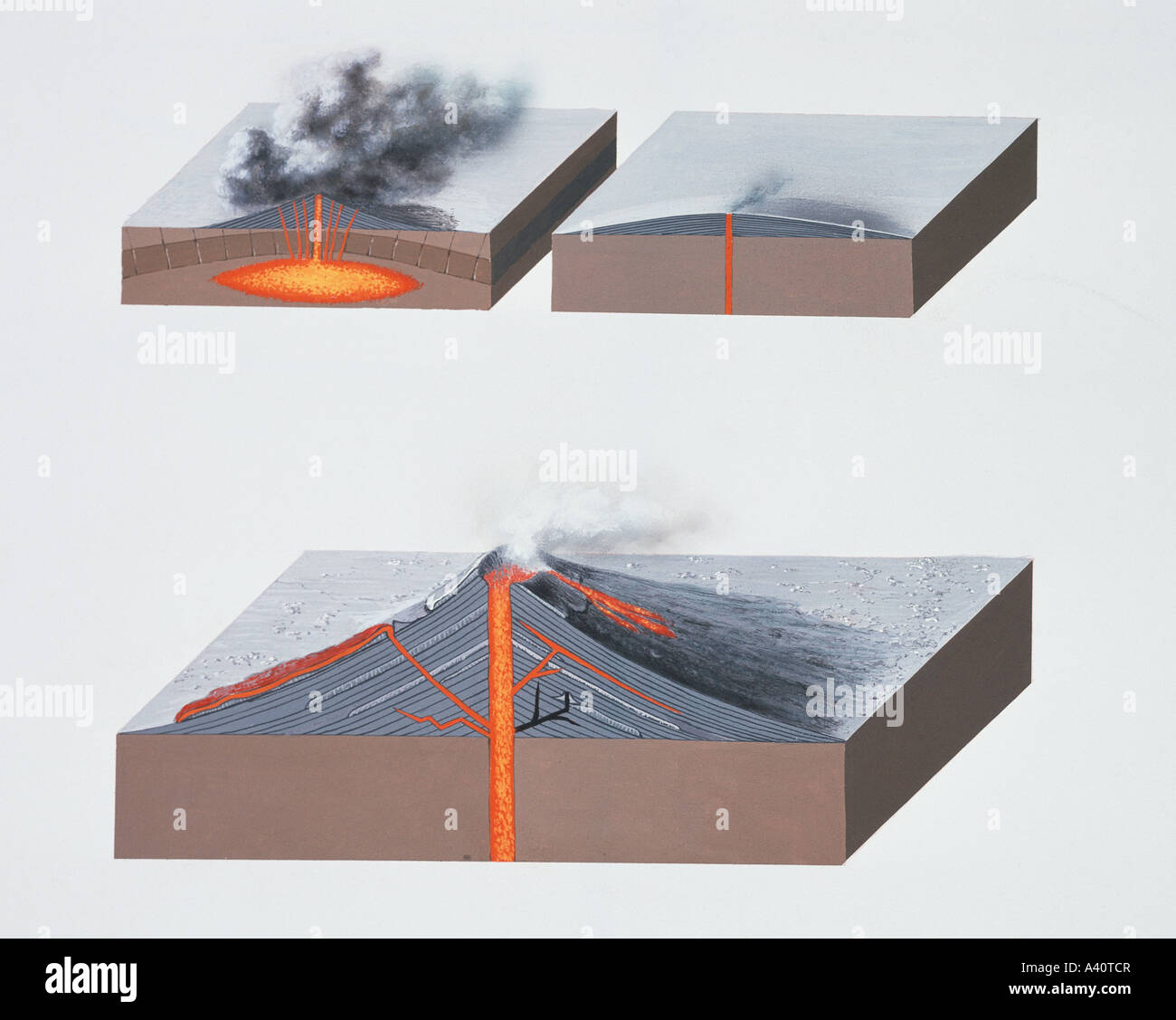 Volcano Diagram Stock Photos Images Alamy Volcanoes Types Image
