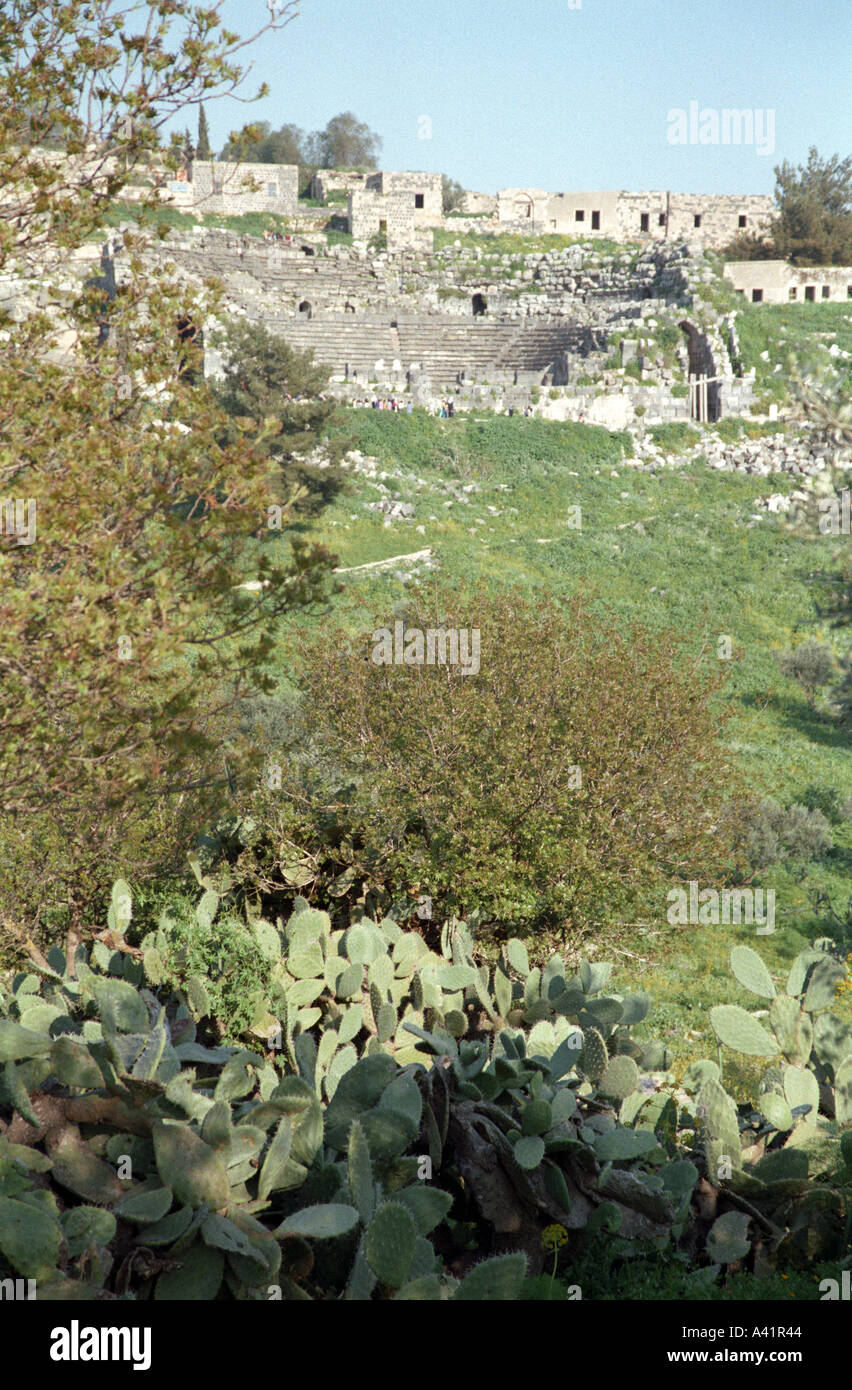 View through vegetation of the West Theatre Umm Qays Jordan - Stock Image