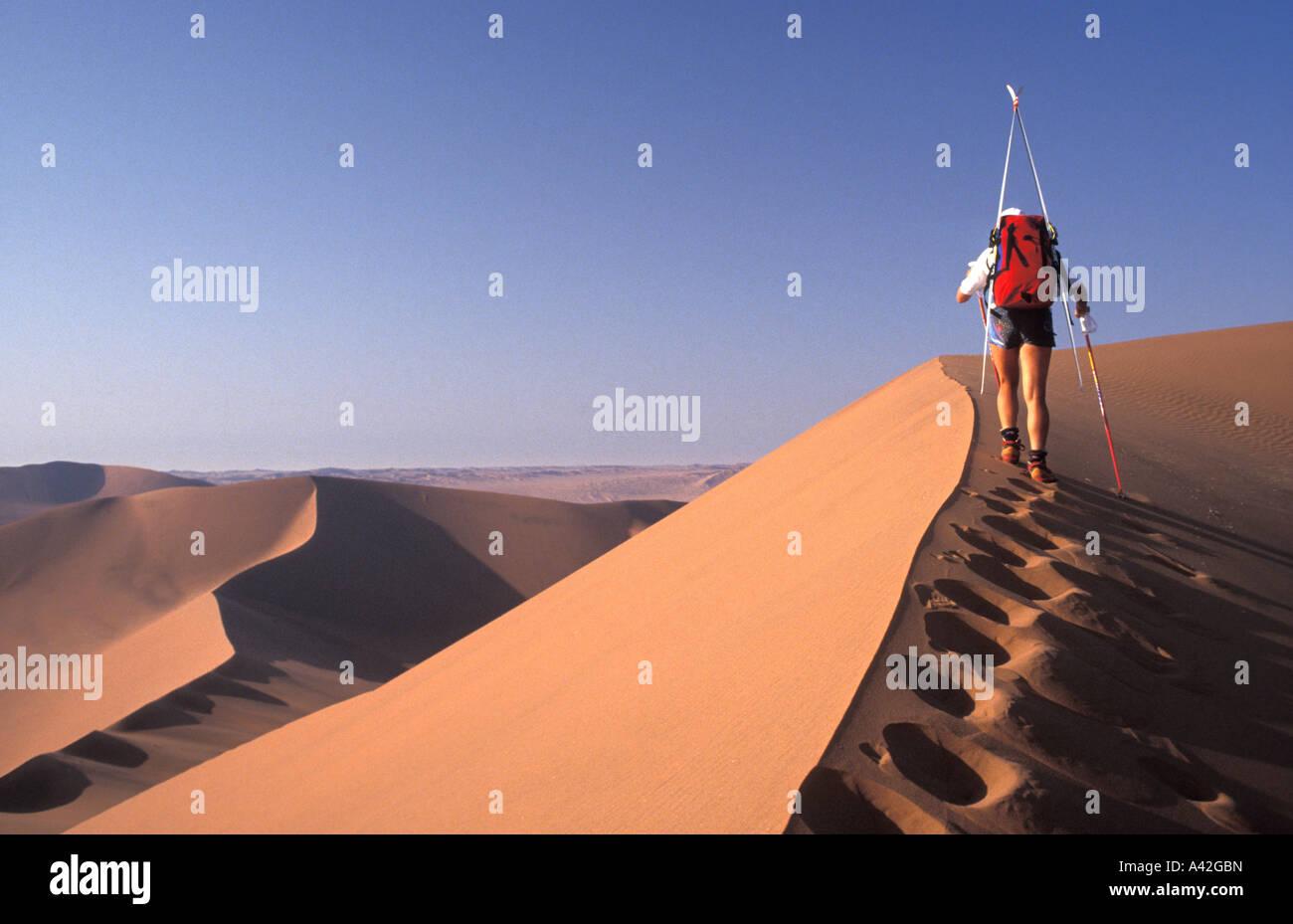 Telemark skier Vaila Macdonald ascending Deadpan Dune Namibia Africa - Stock Image