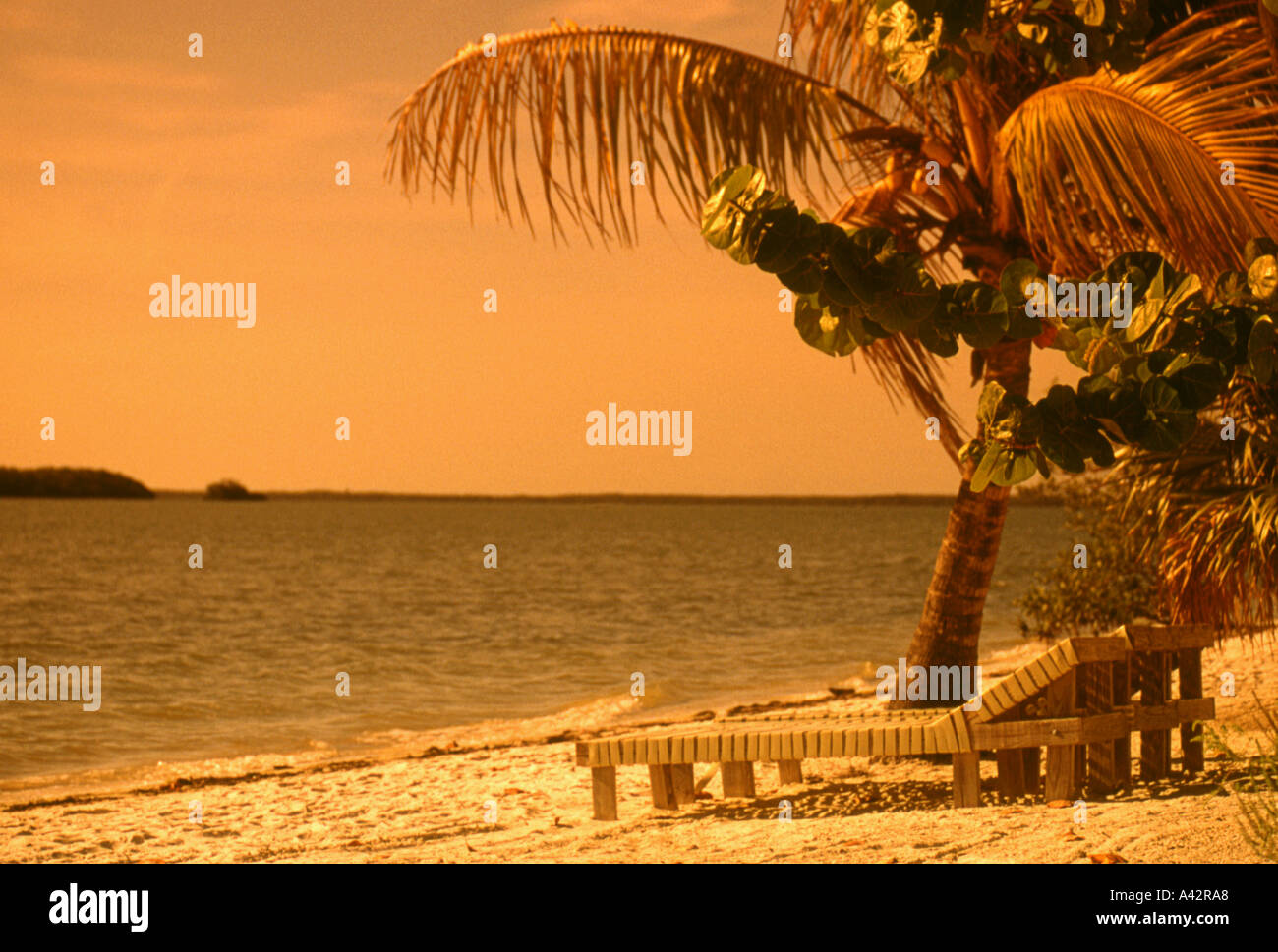 Beach Scenic - Stock Image