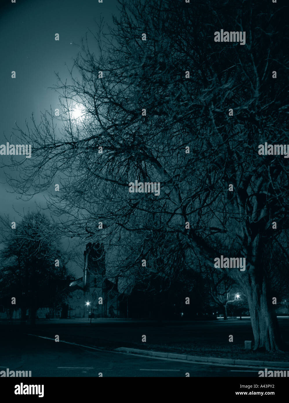Ghostly night; Christ Church and The Stray at night, Harrogate, North Yorkshire, England, UK. - Stock Image