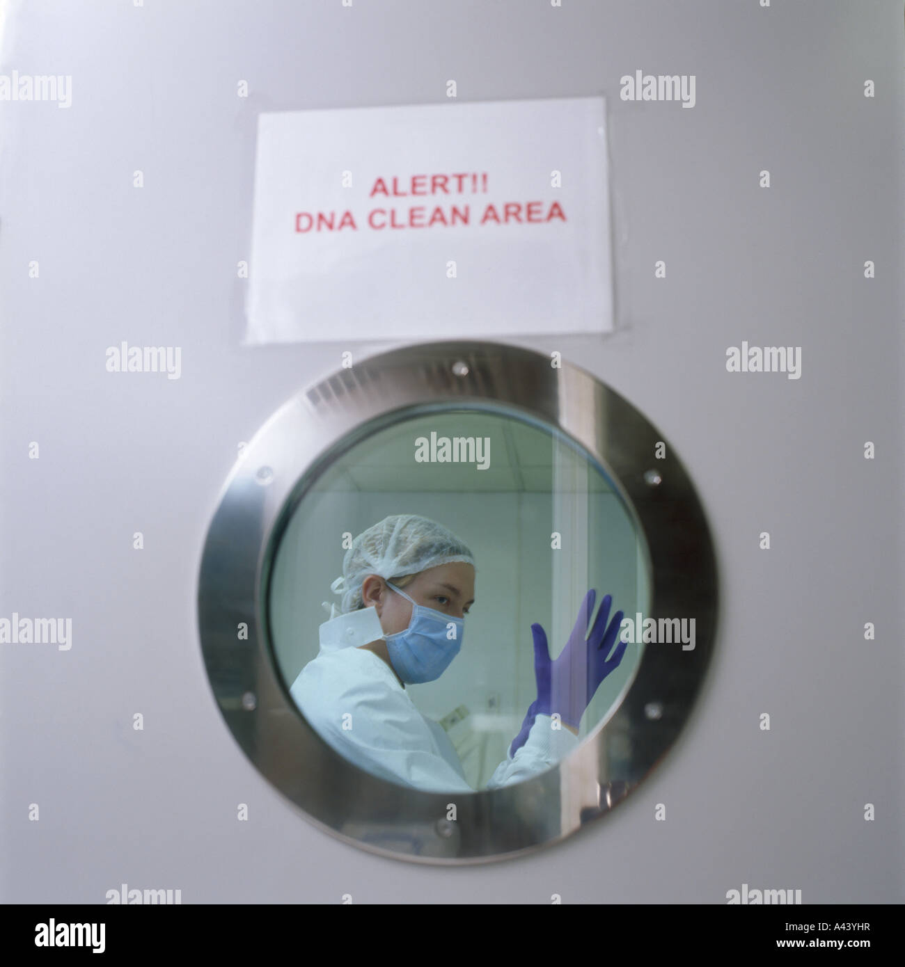 DNA clean area, sterile suits and gloves are worn at the United Kingdom National DNA Database - Stock Image