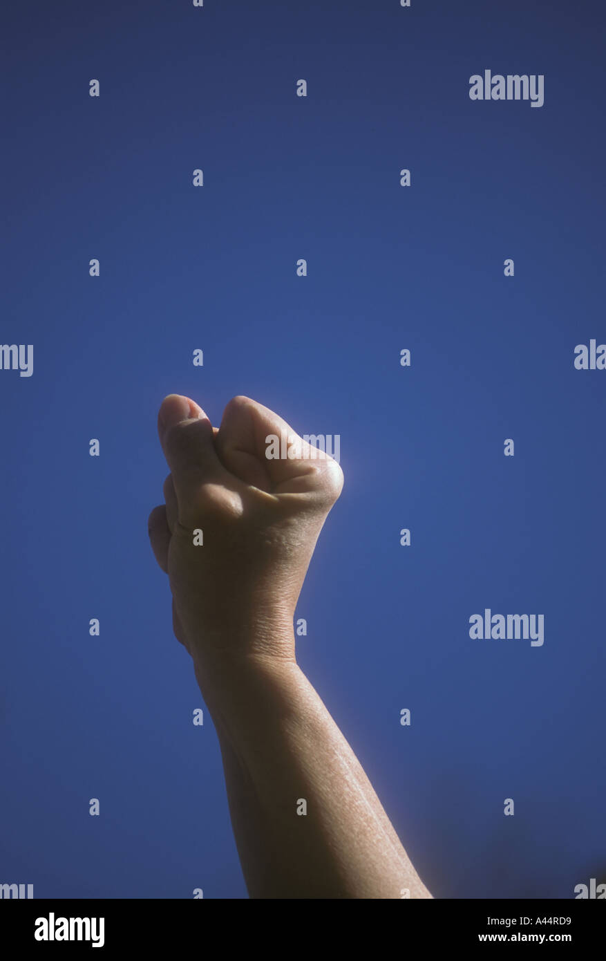Raised Fist - Stock Image