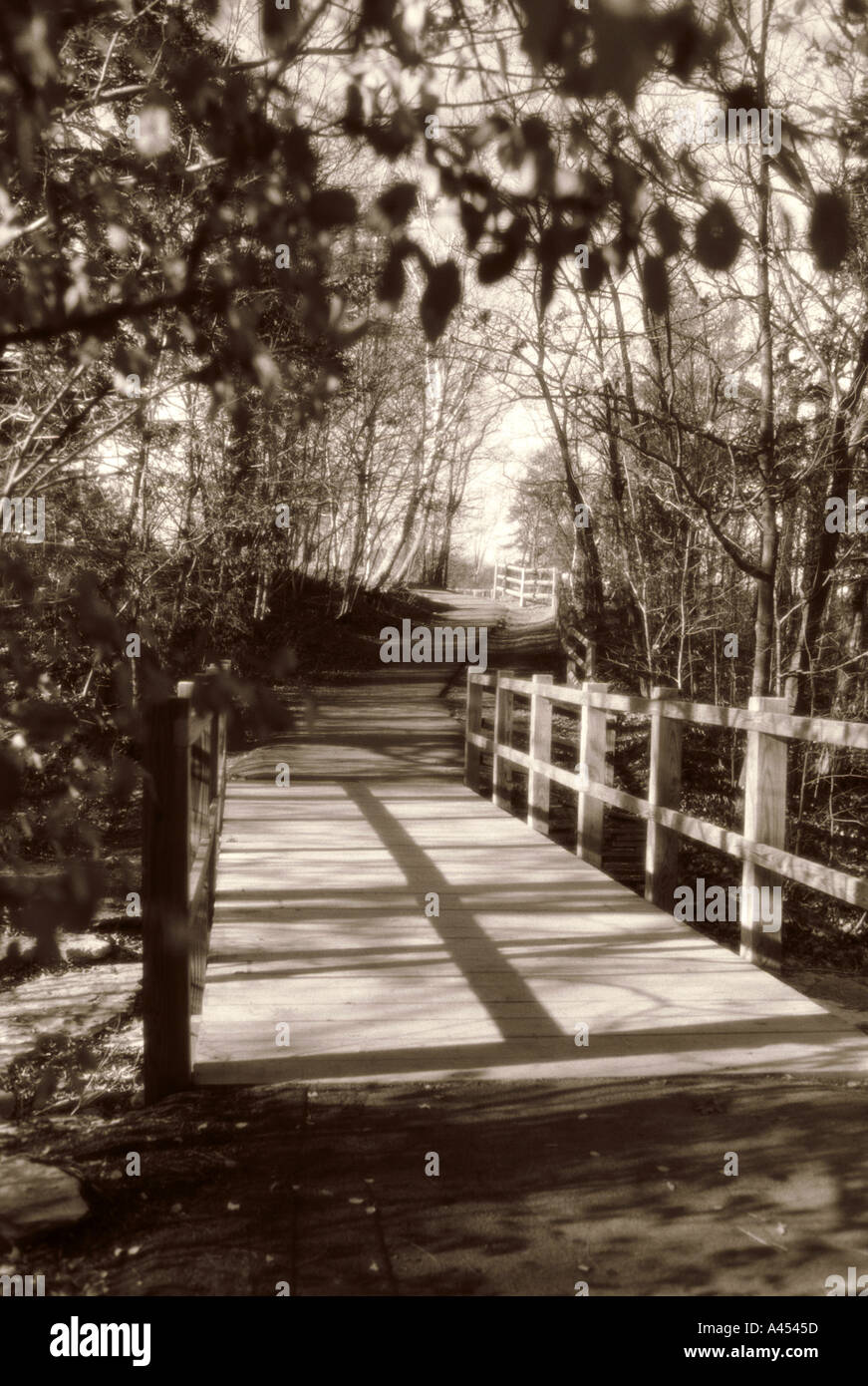 Wooden bridge over stream in woods leads to open space - Stock Image
