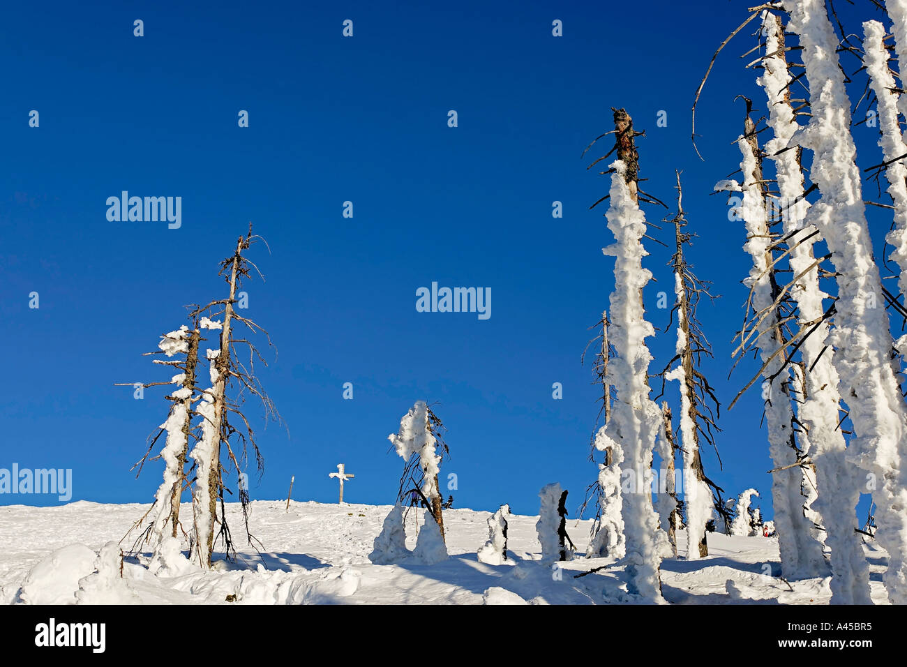 Winter landscape on a mountain named Lusen 1373 m Stock Photo