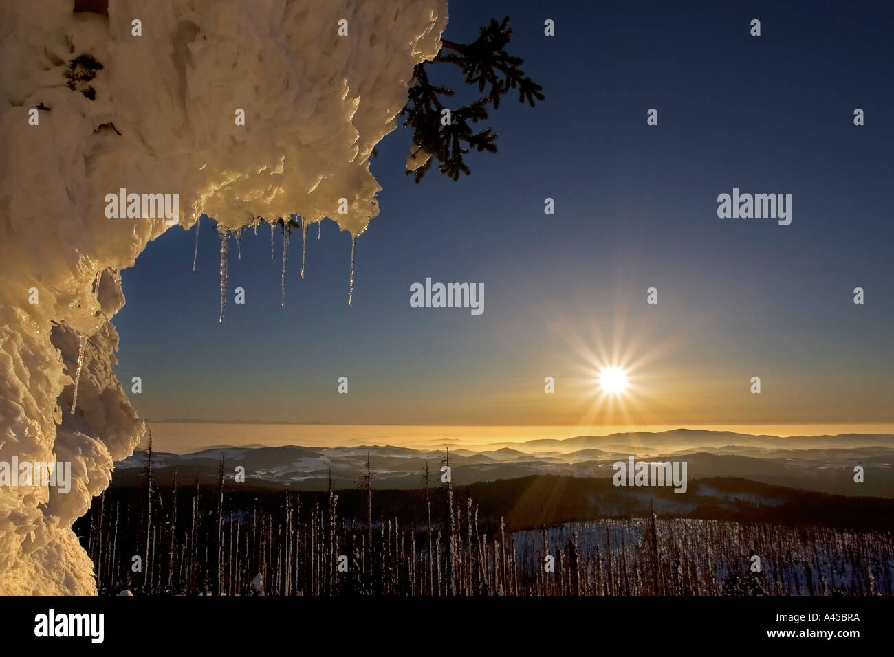 Winter landscape on a mountain named Lusen 1373 Stock Photo