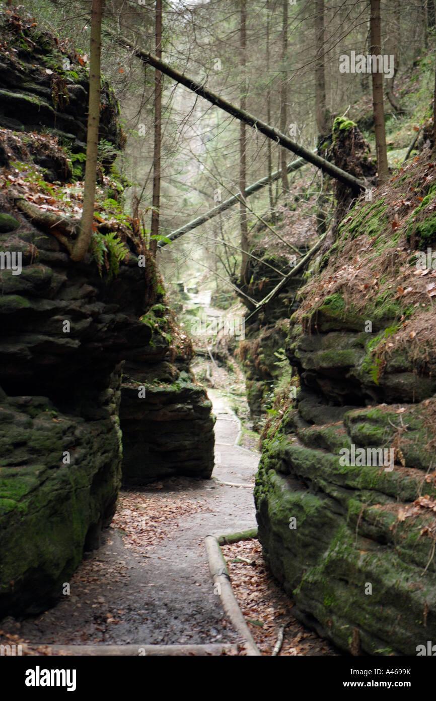 Walk By The Uttewalder Grund In The Saxon Schweiz Stock Photo