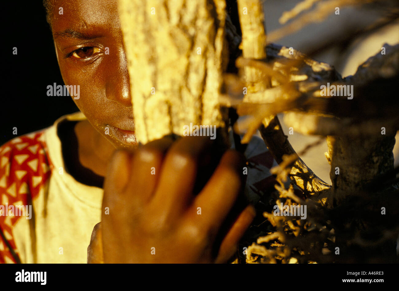 a young hutu orphan who works in the corn fields behind the orphange shalom house ruyigi burundi Stock Photo