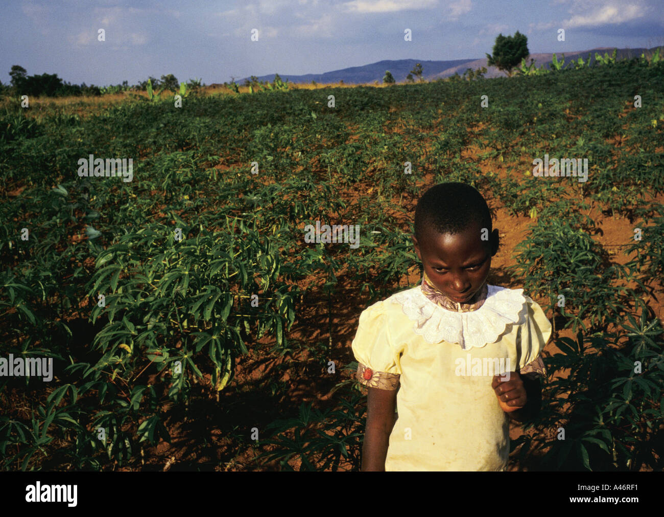 Marie is an 8 years old orphan who works in the fields behind Shalom House where she lives, Ruyigi, Burundi Stock Photo