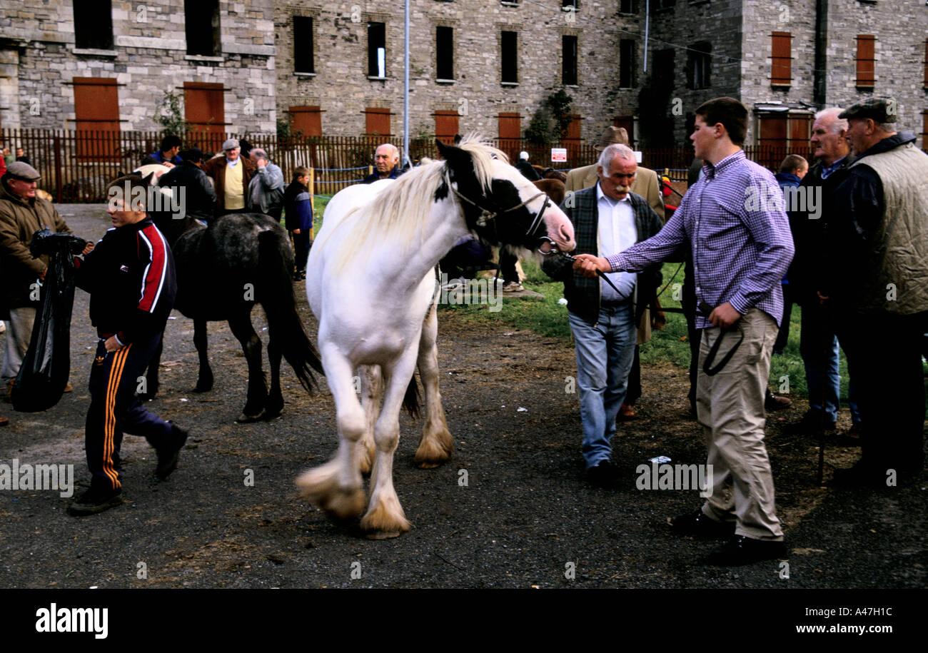 dublin horse market selling buying horses smithfield - Stock Image