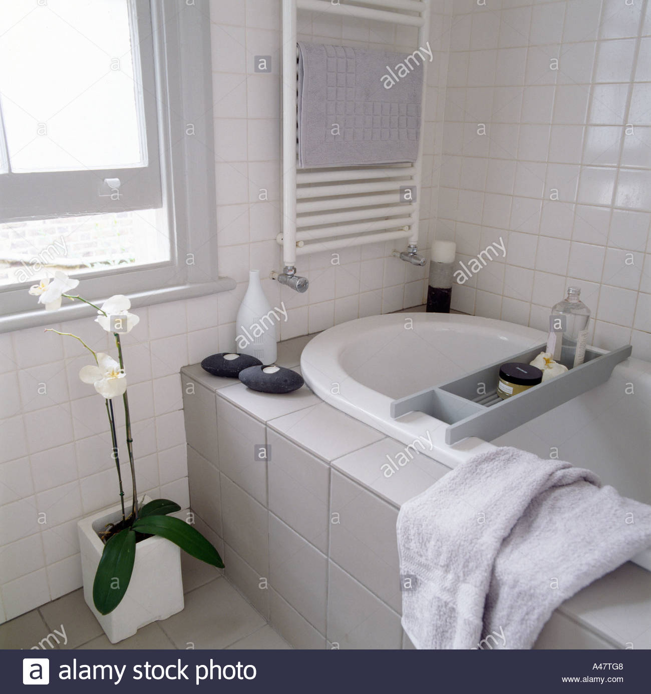 Small Bathroom Color Schemes Gray: Contemporary Small Bathroom With Grey And White Colour