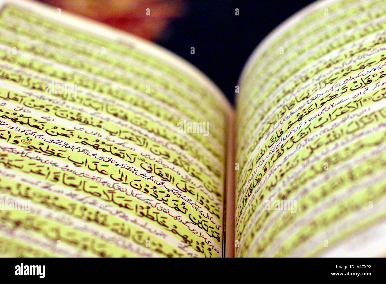 al quran quran koran islam religion stock photos al quran quran