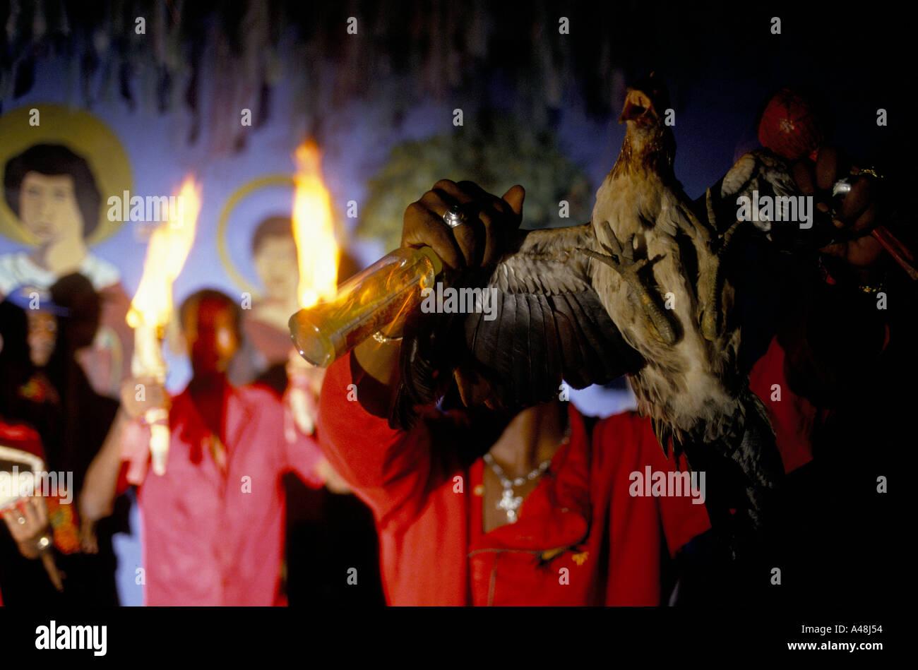 voodoo in haiti voodoo ceremony and trance in port au prince haiti - Stock Image