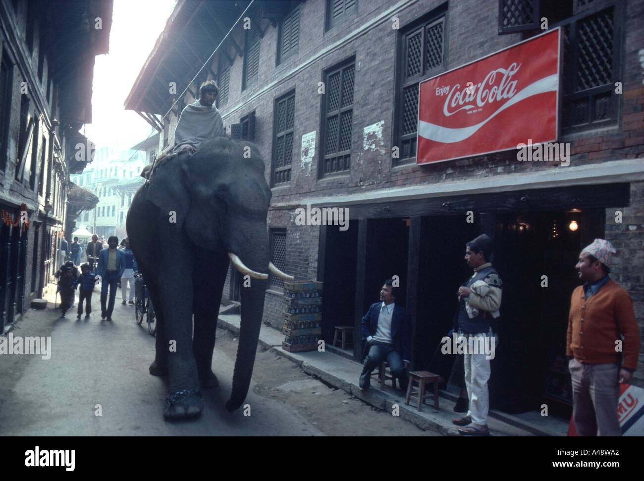 Elephant walking through streets of Katmandu Nepal - Stock Image