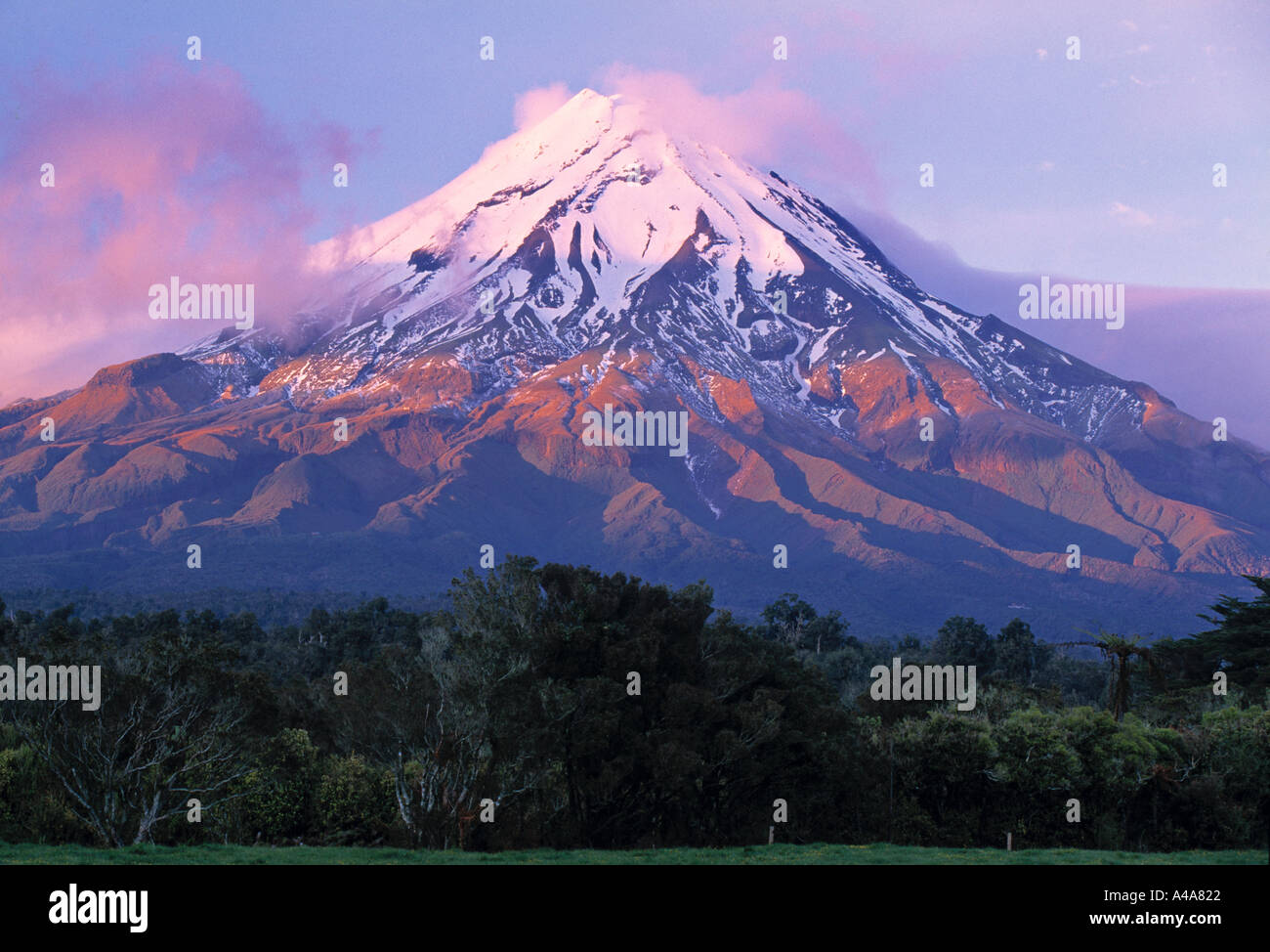 Mt. Egmont (Taranaki), North Island, New Zealand - Stock Image