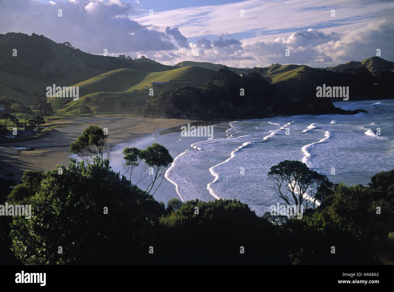 Sandy Bay, Northland, North Island, New Zealand - Stock Image