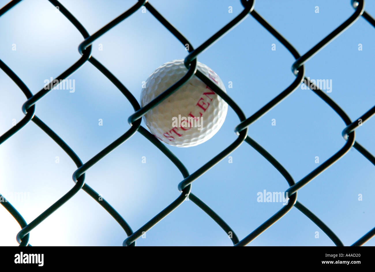 Stolen Golf Ball in a wire cage Stock Photo: 306464 - Alamy