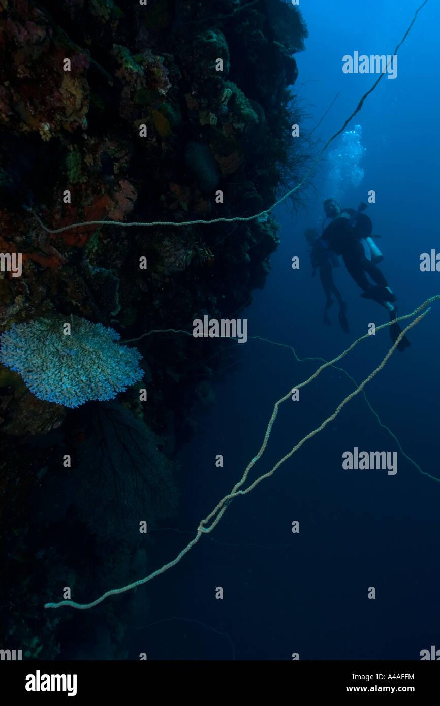 Divers exploring the hull Fujikawa Maru shipwreck Truk lagoon Chuuk Federated States of Micronesia Pacific - Stock Image