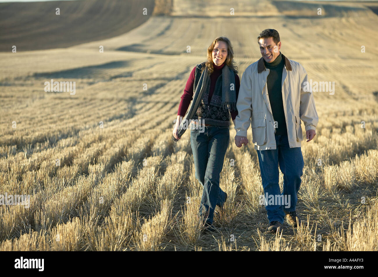 Couple smiling holding hands walking through fields of cut golden grass in Fall Colorado early morning Stock Photo