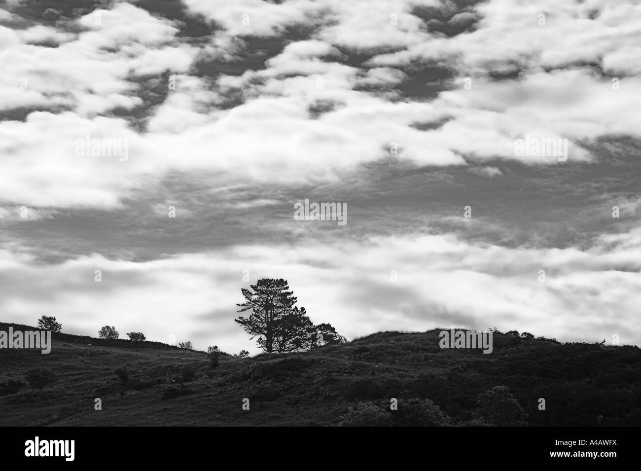 skyline silhouette Welsh mountain Black and White - Stock Image