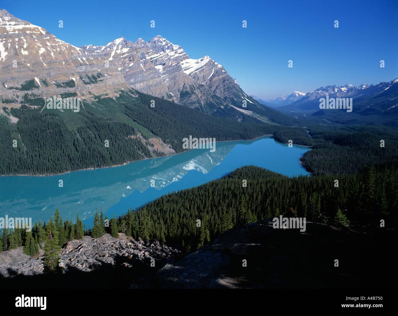 Peyto Lake - Stock Image